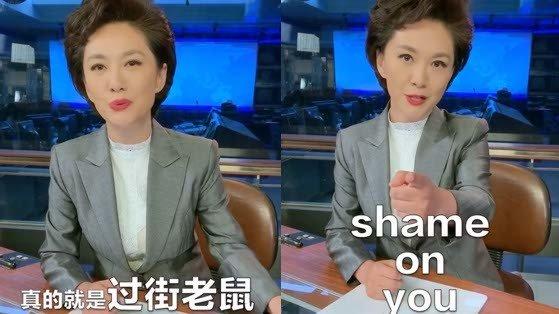 热帖:海外华人都要跟CCTV恶补中文